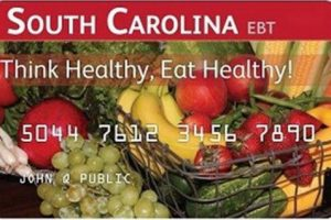 """How to Check South Carolina EBT Card Balance"""