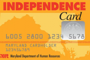 """Check New York EBT Card Balance"""