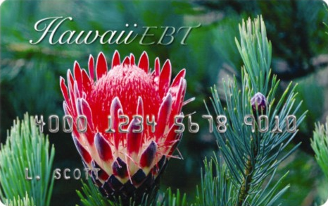 """Hawaii EBT Card Balance"""