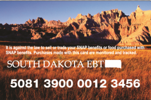 """Check South Dakota EBT Card Balance"""