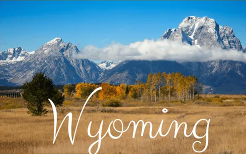 """Wyoming EBT Card Balance"""