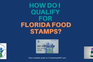 """Do I qualify for Florida Food Stamps"""