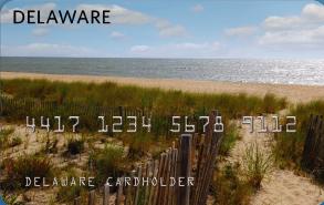 """Delaware EBT Card"""