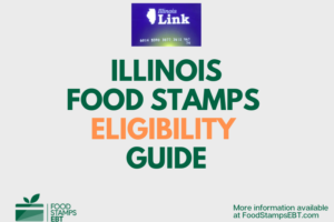 """Illinois food Stamps Eligibility Guide"""